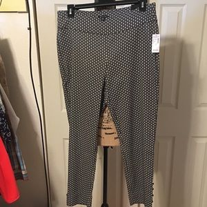 Pixie dress pant